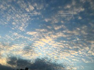 自然,風景,木,屋外,太陽,雲,景色,一眼レフ,秋空,空色,秋雲