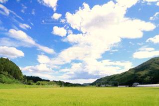 田舎の田園風景の写真・画像素材[1159386]