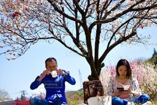 親子でピクニック気分の写真・画像素材[1246544]
