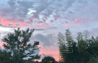 空,秋,雲,夕焼け,夕暮れ,樹木,夕暮れ時,秋空,草木