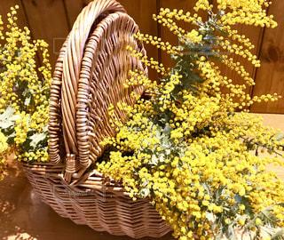 黄色,テーブル,かご,籠,ミモザ,イエロー,黄,カゴ,ミモザの花