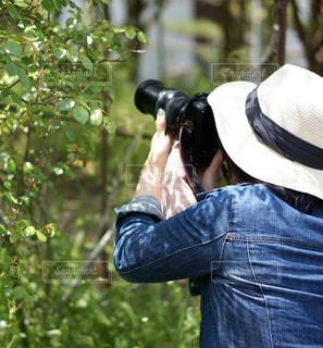 風景,カメラ,カメラ女子,屋外,緑,後ろ姿,葉っぱ,帽子,葉,撮影,樹木,人物,背中,麦わら帽子,新緑,人,後姿,うしろ姿,ジージャン