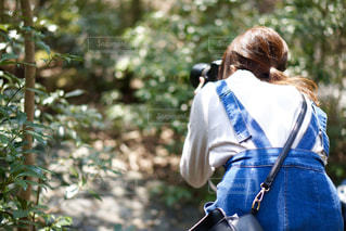 女性,自然,カメラ,カメラ女子,木,森,緑,撮影,人物,新緑,人,後姿,うしろ姿,撮影風景