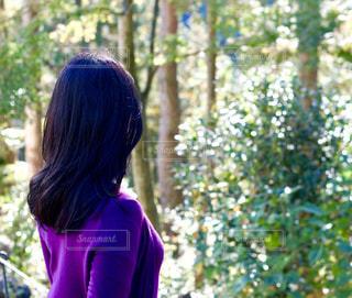 森林浴の写真・画像素材[2281317]