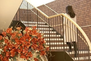 階段の写真・画像素材[2761544]