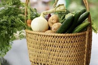 カゴに盛られた野菜の写真・画像素材[4674129]