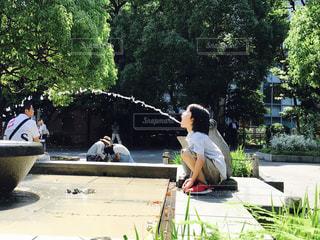 上野公園のカエル?の噴水の写真・画像素材[1160225]
