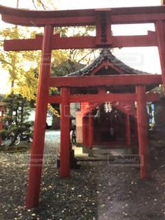 鳥居,晩秋,秋祭り,いちよう,深まる秋,秋空の下,紅く
