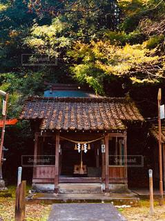 晩秋の拝殿の写真・画像素材[1602248]