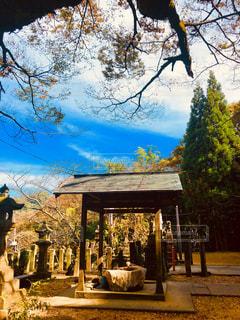 天空に近い神社の写真・画像素材[1602461]