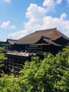 新緑の清水寺の写真・画像素材[1159575]