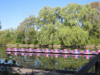 公園のボートの写真・画像素材[1159719]