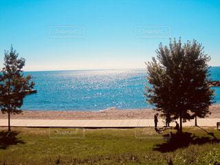 カナダの夏の写真・画像素材[1159730]