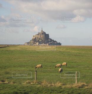 緑豊かな緑のフィールドとモン ・ サン ・ ミシェルの放牧羊の群れの写真・画像素材[1159914]