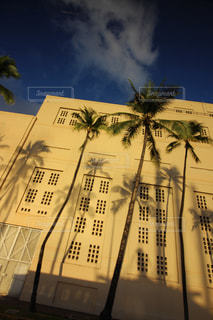 ハワイの街並みの写真・画像素材[1195528]