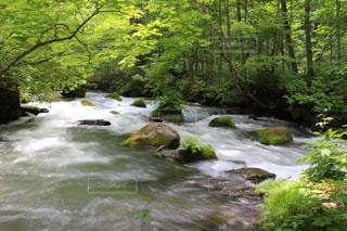 水の体の上の大きな滝の写真・画像素材[1195641]