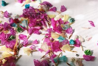 スターチスの花びらの写真・画像素材[1376476]