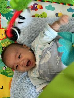 赤ちゃんのぬいぐるみを保持 - No.1162536