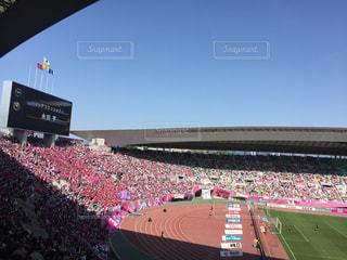 大規模なスタジアムを見ている人でいっぱいの写真・画像素材[1164185]