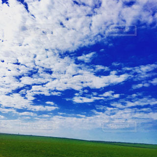 青い空と緑の大地の写真・画像素材[1166691]