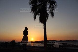 日間賀島のマジックアワーの写真・画像素材[1195433]