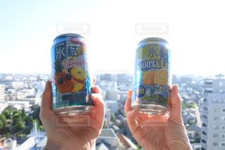 パインとレモン!の写真・画像素材[1309006]