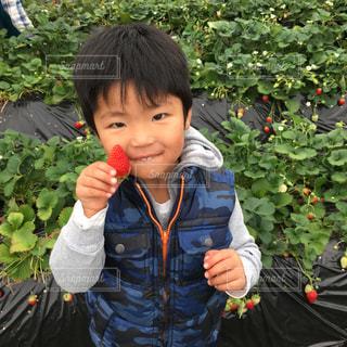 草の中に立っている小さな男の子の写真・画像素材[1170700]