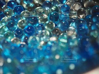 近くに青い背景のアップの写真・画像素材[1312808]
