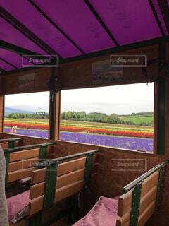富良野の花畑を楽しむバスの写真・画像素材[4451691]