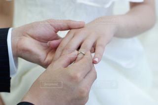 指輪交換の写真・画像素材[1238356]