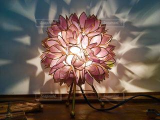 テーブルの上の花の光の写真・画像素材[1217740]