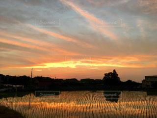 水の体に沈む夕日の写真・画像素材[1269672]