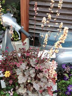 カフェ前にあるバイクと花の写真・画像素材[1368884]