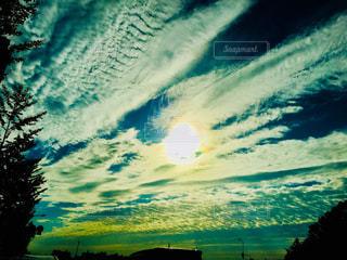空,木,夕焼け,うろこ雲,野外,秋空