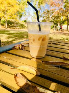 飲み物,公園,紅葉,屋外,茶色,ベンチ,ブラウン,飲料,ミルクティー色