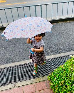 大好きな大きな傘❤️の写真・画像素材[2181202]