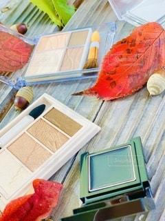 秋,枯れ葉,ベンチ,落ち葉,美容,野外,コスメ,化粧品,ドングリ,秋色,アイシャドー