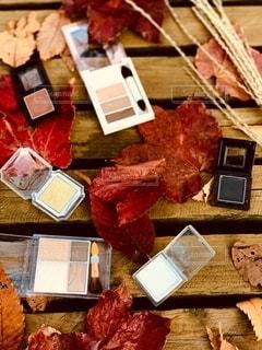 紅葉,屋外,枯れ葉,落ち葉,樹木,ススキ,机,美容,コスメ,化粧品,秋色,アイシャドー