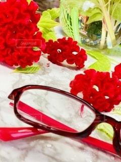 ファッション,花,アクセサリー,ピンク,花瓶,室内,眼鏡,メガネ,老眼鏡,けいとう
