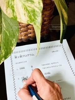 チェック,室内,手,指,ペン,パンフレット,書類,観葉植物,紙,ポトス,データ