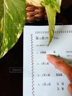 チェック,室内,手,指,パンフレット,書類,観葉植物,紙,ポトス,データ