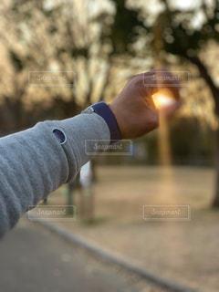 男性,1人,空,公園,屋外,太陽,手,時計,景色,光,指,樹木,人,丸,地面,人間,輪,円,トレーナー
