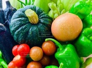 夏野菜集合の写真・画像素材[3668126]
