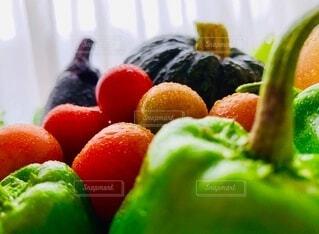 食べ物,風景,屋内,カラフル,カーテン,景色,トマト,野菜,ミニトマト,かぼちゃ,食品,ピーマン,新鮮,食材,茄子,フレッシュ,とれたて,ベジタブル,配置,多色,多種