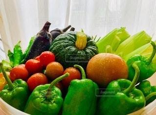 届いた夏野菜たちの写真・画像素材[3668143]