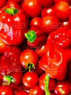 食べ物,風景,赤,トマト,野菜,ミニトマト,食品,ピーマン,カラー,食材,フレッシュ,ベジタブル