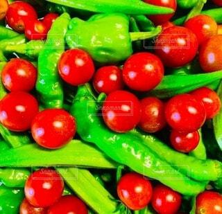 食べ物,風景,緑,赤,トマト,野菜,ミニトマト,食品,ピーマン,オクラ,カラー,食材,フレッシュ,ベジタブル,ししとう,配置