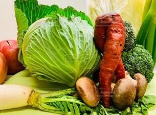 お野菜集合の写真・画像素材[3669645]