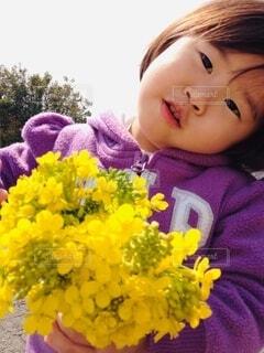 春のお便りの写真・画像素材[4168397]