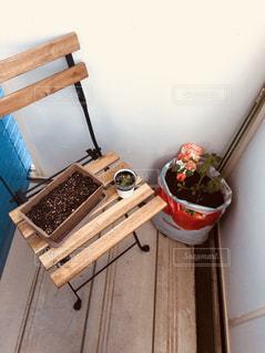 屋内,ベランダ,トマト,壁,家庭菜園,木目,バジル,木の椅子,しそ,お部屋でゆっくり